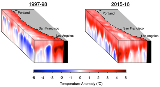 Side by side charts showing temperature anomalies.