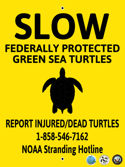 Sign for boaters: SLOW - Federally Protected Green Sea Turtle Area. Courtesy SoCal Sea Turtles, Inc.