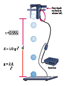 Freefall Timer Adapter