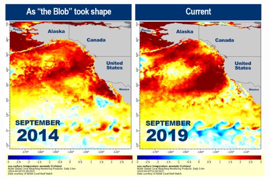 9.5.2019 Marine Heat Wave NOAA Coral Reef Watch 508.png
