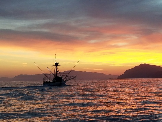 Commercial fishing vessel off the coast of California