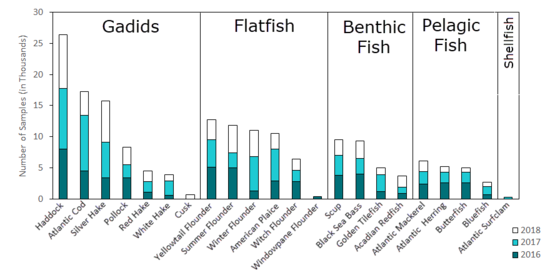 Bar graph of numbers of fish aged by species for 2016-2018.