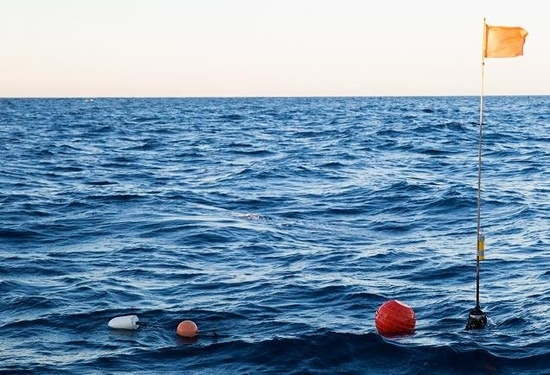 Buoys floating on the ocean