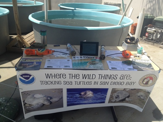 Marine turtle ecology and tracking booth at science event for San Diego State University. Photo: NOAA Fisheries