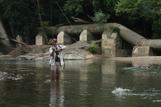 BobIrvin_fishing_PatapscoRiver 3x2 American Rivers.jpg