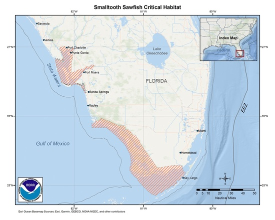 map-smalltooth-sawfish-critical-habitat-Florida-SERO.jpg