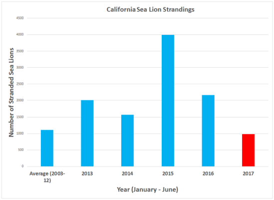 Comparison of monthly strandings for California sea lion pups and yearlings in 2013-2017 versus the average stranding rate (2003-2012).