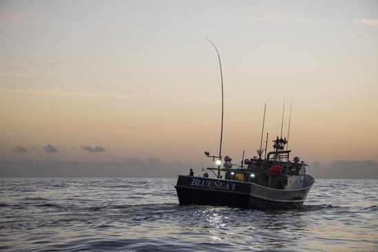 F/V Blue Sea II, a program participant, fishing with greenstick gear off the coast of Louisiana.