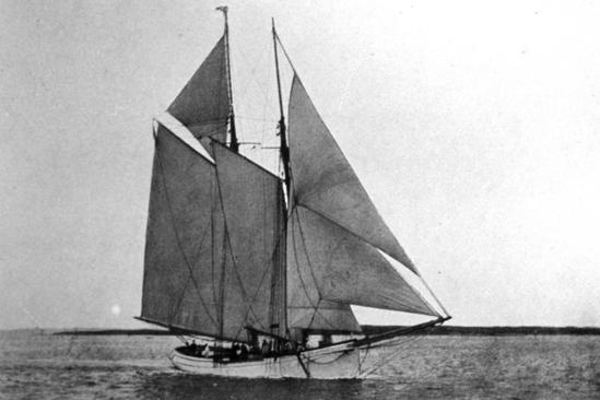 Schooner Gampus under sail