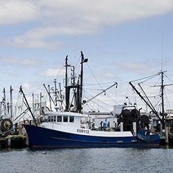 Northeast Fishing Boats.jpg