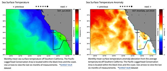 Side by side chart of sea surface temperature and sea surface temperature anomaly.