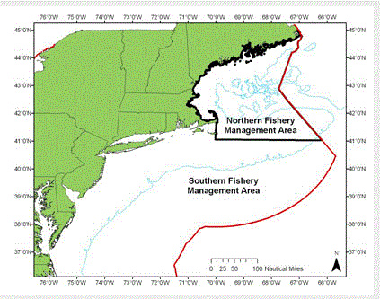 Monkfish Management Areas