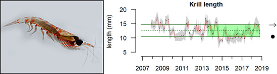 Graph showing decrease in krill