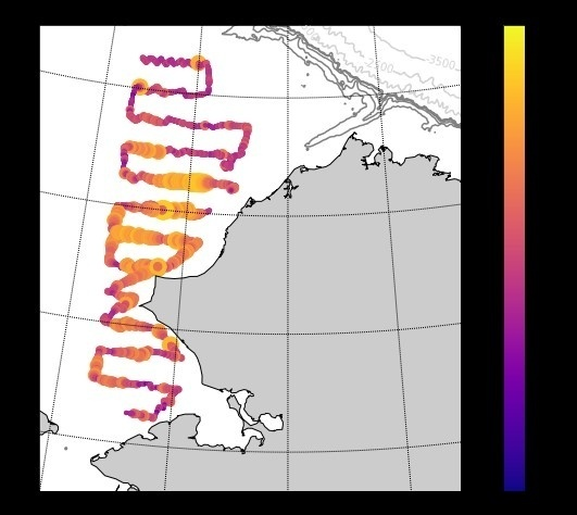 Map of the fish echoes in the Chukchi Sea during the second pass in late August.