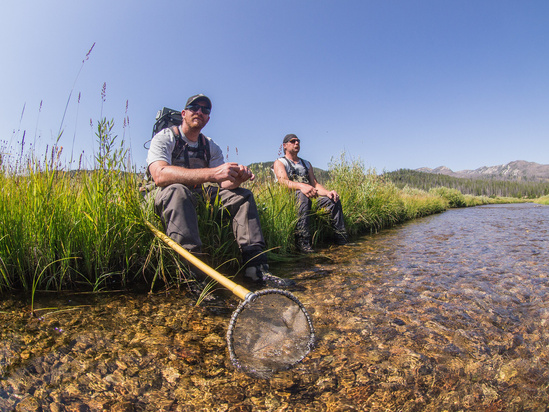 scientists field sampling near a stream.jpg