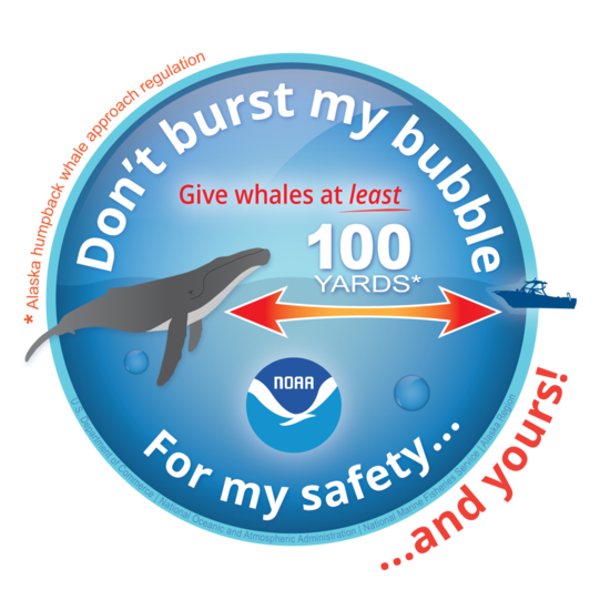 Don't burst my bubble icon with humpback whale and 100 yards arrow