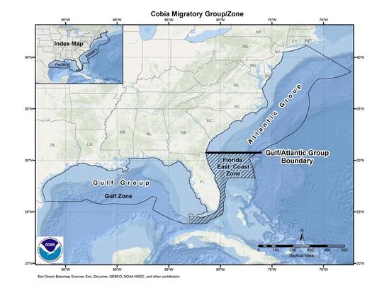 cobia map 10-3-19.jpg