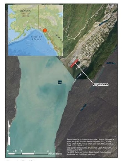 Map and satellite image of project area