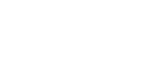 Texas PAC logo