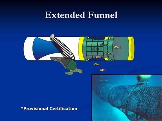 Extended Funnel BRD graphic and image.jpg