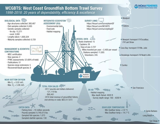 infographic-NOAA-NWFSC-WCGBT.jpg
