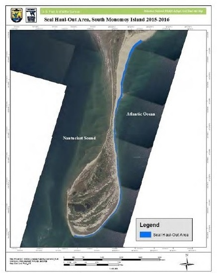Map of seal haulout areas on South Momonoy Island