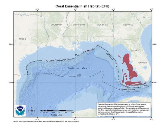 map-coral-EFH-GoMex-SERO.jpg