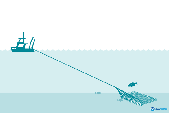 Dredge illustration
