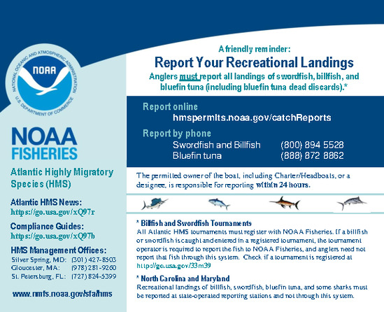 Atlantic HMS Recreational Reporting Flyer