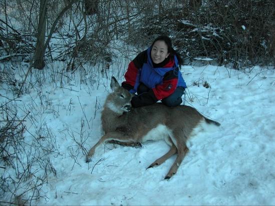 The author with a sedated deer in the snow.