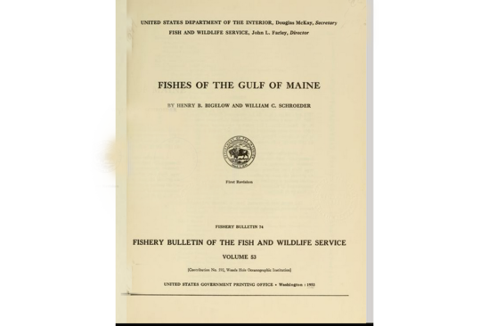 Front cover of publication.