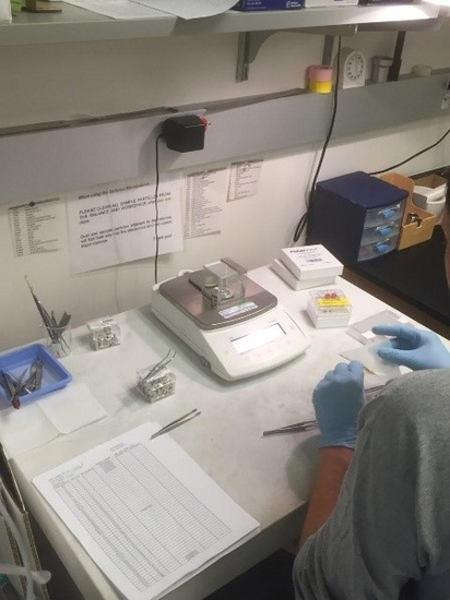 Image of microbalance used to weigh samples for stable isotope analysis. Photo: NOAA Fisheries