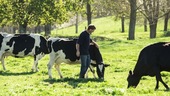 Milk standardisation