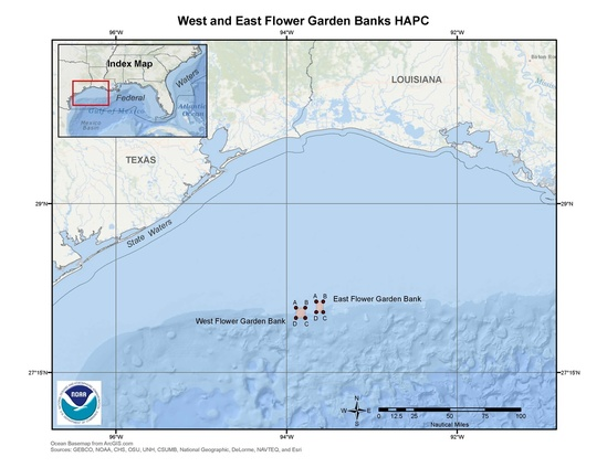 West and East Flower Garden Banks HAPC Fishery Management