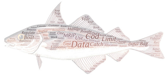 Word cloud from New England recreational roundtable