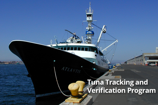 Tuna Tracking and Verification Program