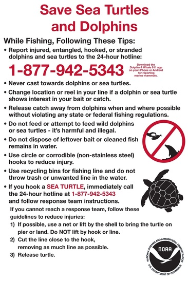 protect_sea_turtles_and_dolphins_sign.jpg