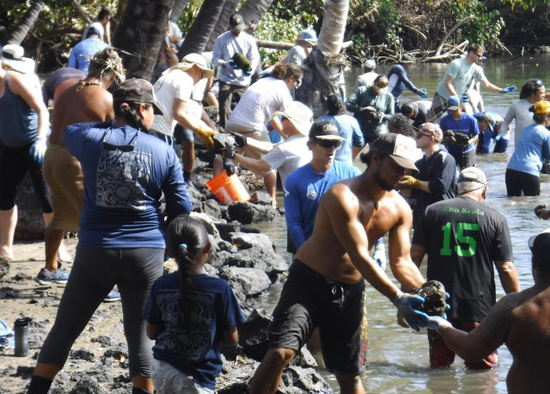 Volunteers restore an ancient rock wall at Kīholo Fishponds in West Hawai'i. Credit: Nancy Erger.