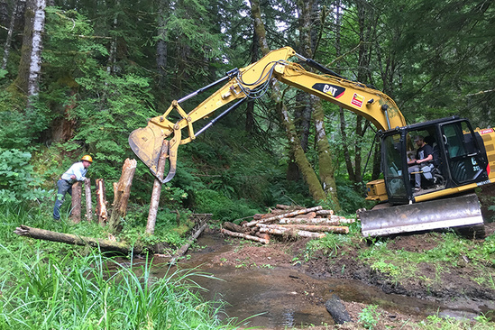 A backhoe pushes a log piling into the muddy ground of a forest while a construction worker looks on