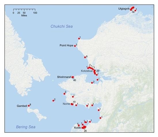 Map of Ice Seal Strandings.jpg