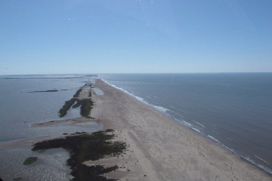 natural infrastructure barataria barrier island restoration 4.jpg