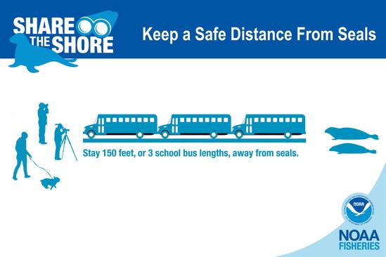 Safe Distance.jpg