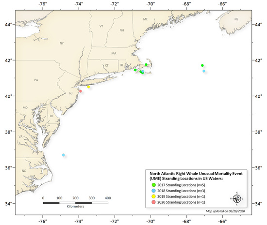 Annual north atlantic right wale mortalities (0919).jpg