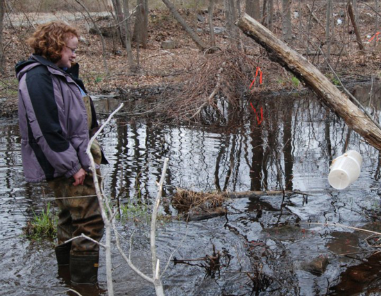Tammy Murphy wades in a vernal pool.