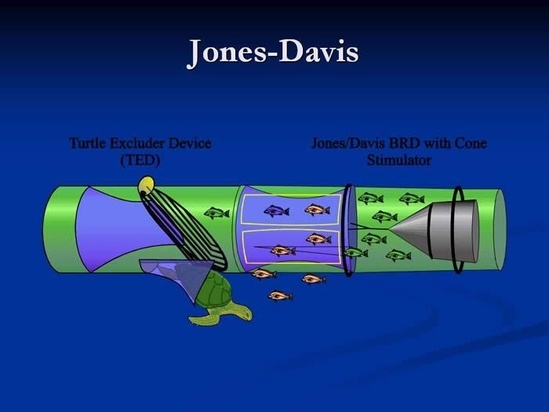 Jones-Davis BRD graphic.jpg