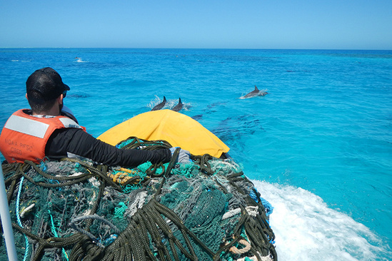 Pacific Island people picking up marine debris with spinner dolphins in the background