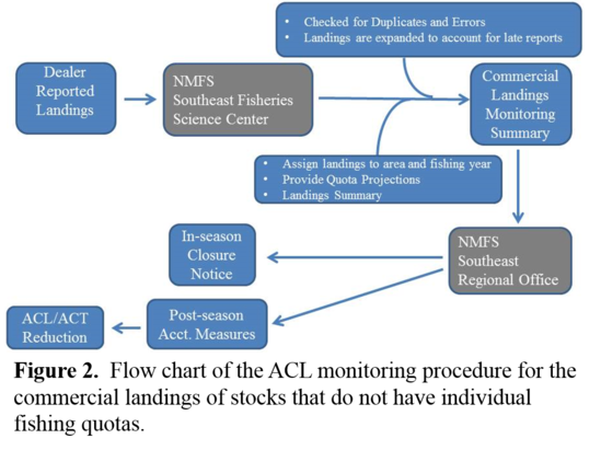 ACL Flow chart